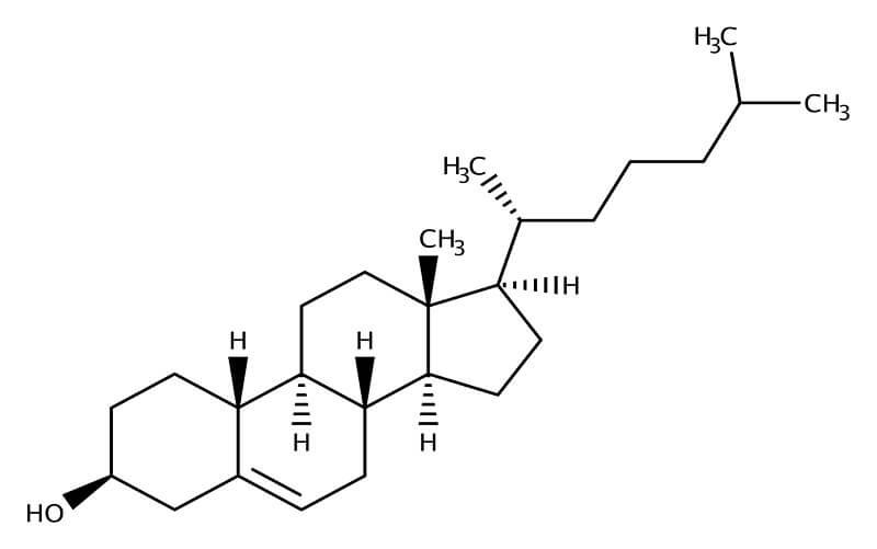 Holesterol grafički prikaz